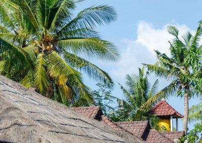 As palmeiras, o céu azul e as cabanas tropicais de Nusa Lembongan dão-nos a energia positiva para sentirmos o Happy Flow.