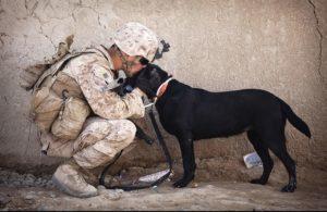 Um soldado a abraçar um cão, lembra-nos de como os abraços são importantes. E tu, andas na Luta ou nos abraços?